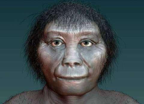 """""""الهوبيت"""".. واحد من أقدم أشكال البشر"""