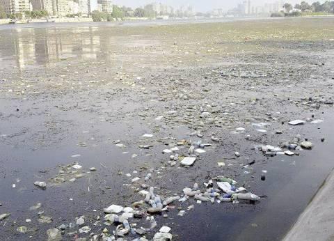 فقط فى «البحر الأعظم»: تسكن على النيل.. وتعانى من الزبالة