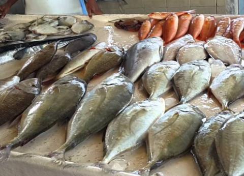 أسعار السمك اليوم الخميس 11-7-2019 في مصر