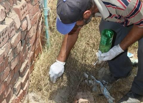 """ظهور حالة لدغ ثعبان جديدة بقرية شبرا بخوم.. و""""الصحة"""" ترفع الطوارئ"""