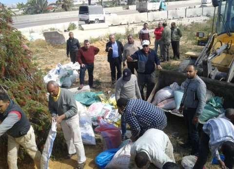 بالصور| 122 طن رمل لتأمين لجان 73 مدرسة بالدشم في الإسكندرية