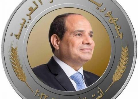 """مسؤول """"أنت الأمل"""": المصريون بالخارج أكدوا نجاح الحملات الشعبية"""