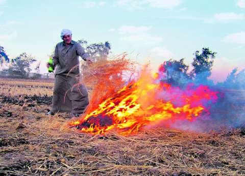 بدء موسم السحابة السوداء.. و«فهمى»: الأقمار الصناعية ترصد حرق قش الأرز لحظياً