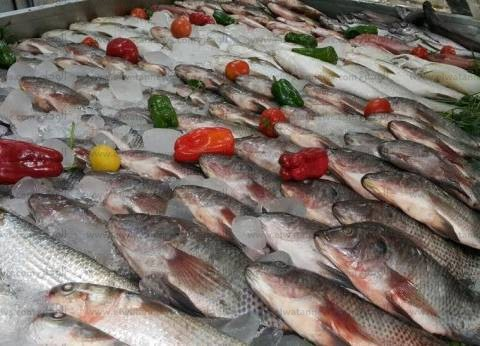 """""""الزراعة"""": خطة لتنمية الإنتاج السمكي لبحيرة البرلس"""
