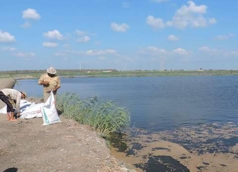 دليل «البيئة» لـ«الاستزراع السمكى»: 3 طرق للإنتاجية تختلف كثافة الأسماك بها.. وأكثرها ينتج حتى 50 كيلو لكل متر مكعب مياه.. ولدرجة الحرارة دور فعال فى مقاومتها للأمراض