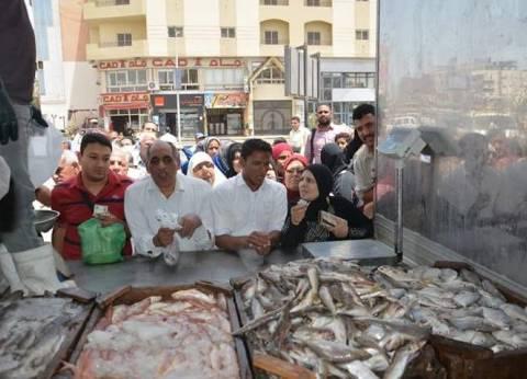 استقرار أسعار الأسماك في سوق العبور اليوم