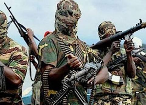 السلاح التركى بيد «بوكو حرام» ودعم علنى لـ«القاعدة» فى مالى