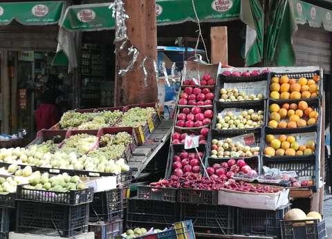 استقرار أسعار الفاكهة في سوق العبور.. والبرتقال بـ8 جنيهات للكيلو