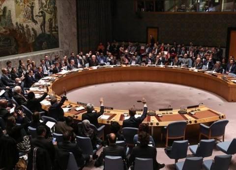 مجلس الأمن يدين اغتيال السفير الروسي في أنقرة