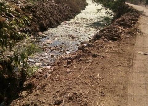 """مزارعون يستغيثون من نقص مياه الري بالغربية: """"150 ألف فدان هيبوروا"""""""