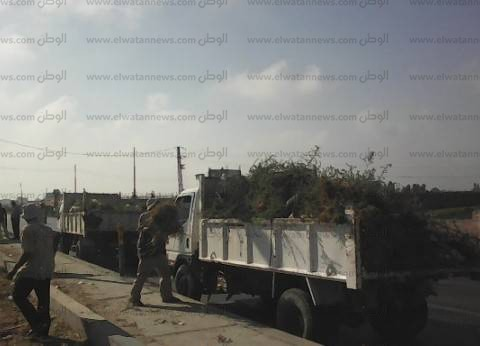 حملة نظافة على الطريق الزراعي بمركز أبو حمص في البحيرة