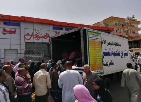 محافظة البحر الأحمر تطرح أسماك مخفضة للمواطنين قبل شم النسيم