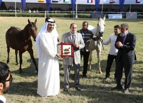 """تكريم منصور بن زايد خلال الدورة الـ17 لبطولة """"الخيول العربية الأصيلة"""" في القاهرة"""