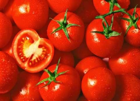 تناول الطماطم يوميا يقي من الإصابة بسرطان الجلد