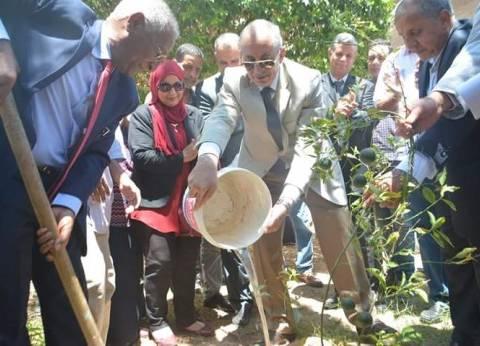 انطلاق حملة السيسي لزراعة مليون شجرة مثمرة بالبحر الأحمر