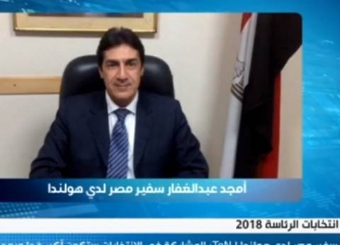 سفير مصر بهولندا: مشاركة المصريين بالانتخابات تنم عن حس وطني