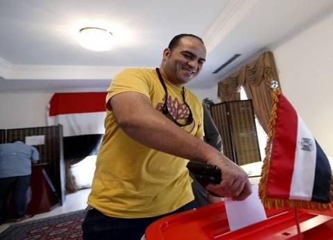 """""""العليا"""": """"الخارجية"""" تعاونت معنا لإتمام انتخابات المصريين في الخارج"""
