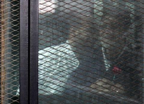 """الجنايات تؤيد استمرار إخلاء سبيل متهم في """"تحالف دعم الإخوان"""""""
