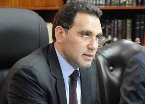 """""""النشار"""": الاعتداءات الإرهابية تعدت مرحلة إثارة الفتن وتهدف لضرب اقتصاد مصر"""
