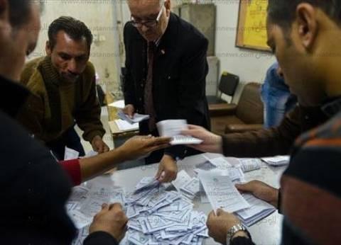 جنوب سيناء تتربع على عرش المحافظات بنسبة تصويت 38% في الانتخابات البرلمانية