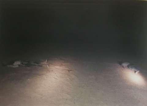 التحقيقات: الإرهابيون فاجأوا القوات بإطلاق قذائف «هاون وآر بى جى»