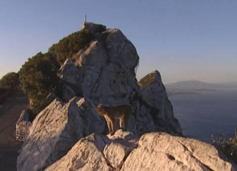"""جبل طارق.. أولى مشاكل أوروبا بعد """"بركسيت"""""""