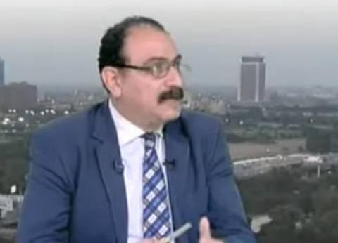 أستاذ علوم سياسية: اختيار السيسي لعباراته كان مدروسا