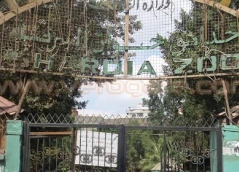 بالصور| الجناين والرواد وحديقة الحيوان.. مقاصد أهالي الشرقية بالعيد
