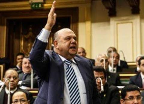 النائب محمد ماهر: أهل الشر يحاولون عرقلة فرحة المصريين