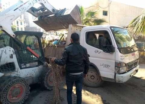 رفع 28 طن مخلفات قمامة بحي الجمرك في الإسكندرية