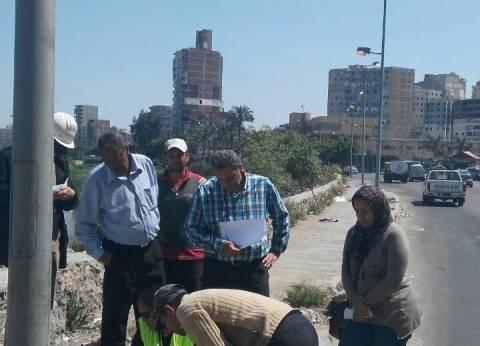 محافظ الإسكندرية: إطلاق التيار الكهربائي بـ51 عامودا بطريق المحمودية