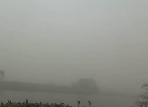 رغم العواصف الترابية الشديدة..  استمرار التصويت في المنيا