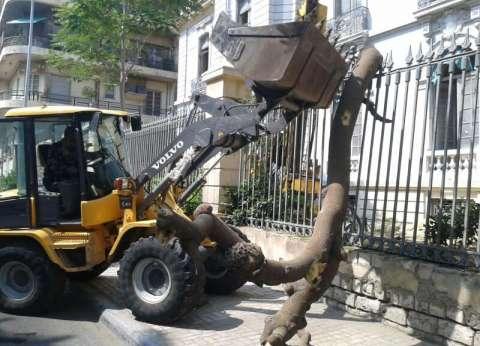 حملة نظافة بنطاق حي وسط بالإسكندرية
