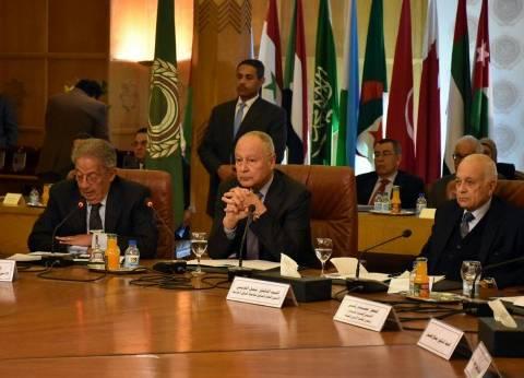 أحمد أبوالغيط يؤكد أهمية تطور الثقافة العربية لمواكبة التطورات في العالم
