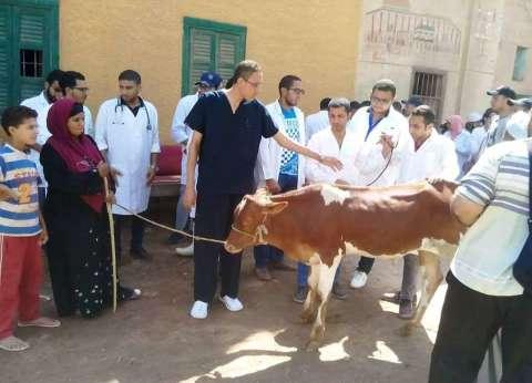 """محافظ الدقهلية: تحصين 214 ألف رأس ماشية وأغنام ضد """"الحمى القلاعية"""""""