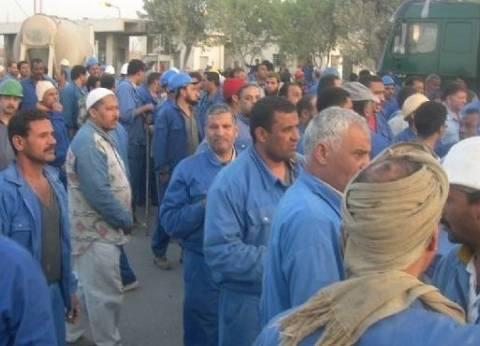 الخدمات النقابية: عمال غزل المحلة رفضوا اتفاق الإدارة ومواصلين إضرابهم