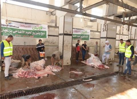 بالصور| جمعية الأورمان تذبح 600 رأس ماشية محلية لتوزيعها على المحافظات