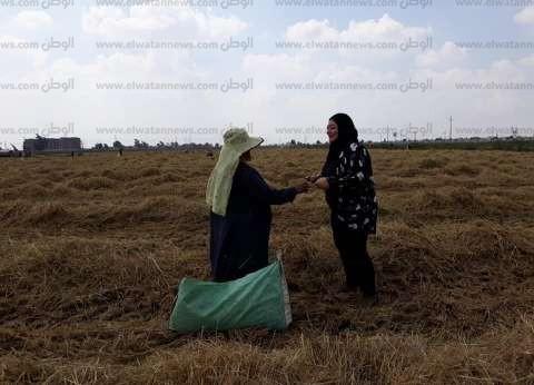 تنفيذ 42 حملة توعوية بالقيمة الاقتصادية للمخلفات الزراعية في كفر الشيخ