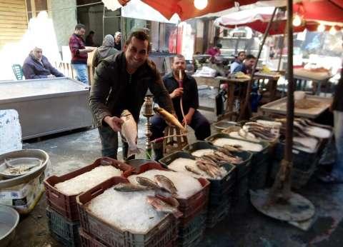 تراجع أسعار الأسماك بنسبة 20% في أول أيام رمضان بدمياط