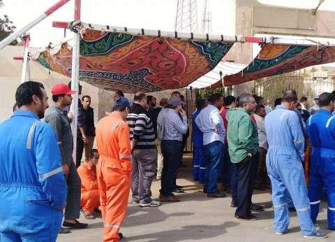 إقبال من العاملين بالسياحة على اللجان الانتخابية بالبحر الأحمر