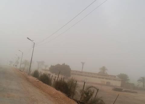شركة الكهرباء في الشيخ زويد: تركيب كابلات أرضية بدلا من الهوائية