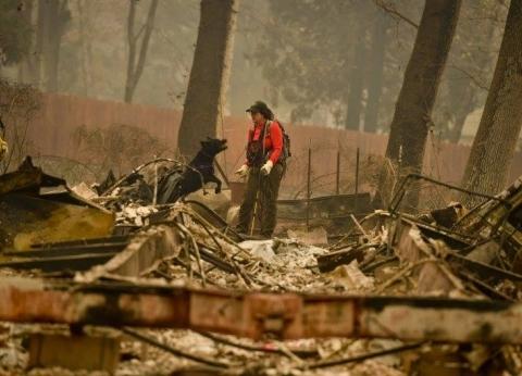 بالصور| حرائق الغابات في أمريكا تتسبب في تشرد العائلات