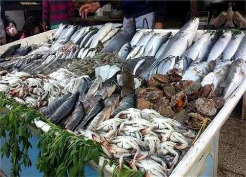 أسعار السمك اليوم الأحد 21-4-2019 في مصر