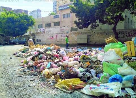 «رأس التين ومينا البصل».. القمامة تغلق المداخل وأكشاك الباعة تحتل الأرصفة