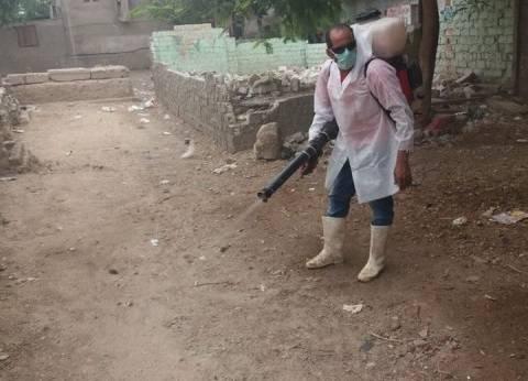 """""""بيطري القاهرة"""" تبدأ حملة تطهير أسواق لتقليل انتشار """"إنفلونزا الطيور"""""""