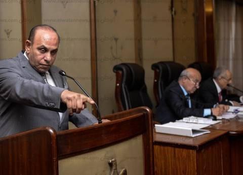 """""""تشريعية النواب"""" توافق على الاتفاق بين مصر والوكالة الفرنسية"""