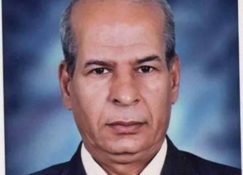 عبد الحافظ بخيت مديرا عاما للنشر بالهيئة العامة لقصور الثقافة