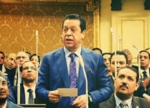 """عضو """"برلمانية المصريين الأحرار"""": نصر أكتوبر أعاد العزة لمصر والعرب"""