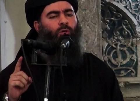 """مرصد الفتاوى: الصراع بين """"القاعدة"""" و""""داعش"""" يعكس تعطشهما لمزيد من سفك الدماء"""