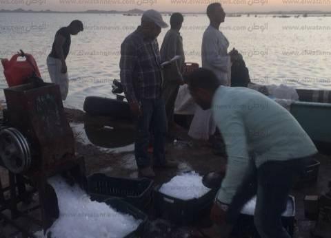 مسطحات السد العالي تضبط 2175 كيلو أسماك معدة للتهريب من بحيرة ناصر